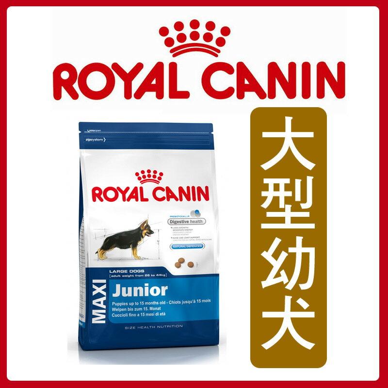 ★汪咪堡★法國皇家大型幼犬4kg