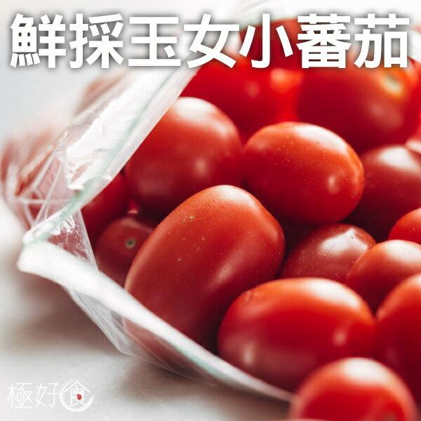 極好食❄【甜度破表】玉女小蕃茄-600g/盒