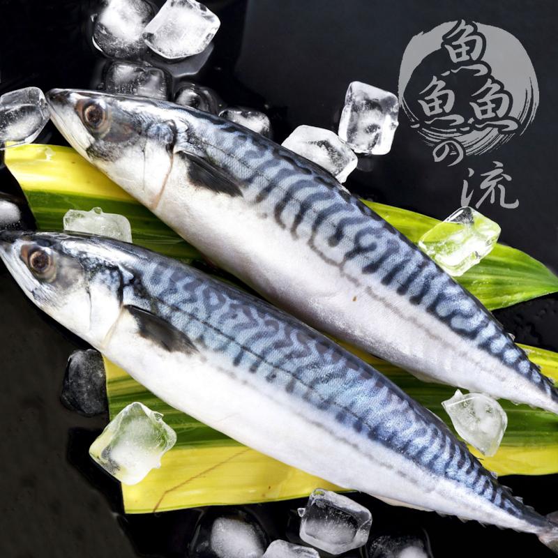 ~鮮之流~挪威薄鹽鯖魚 360g 尾