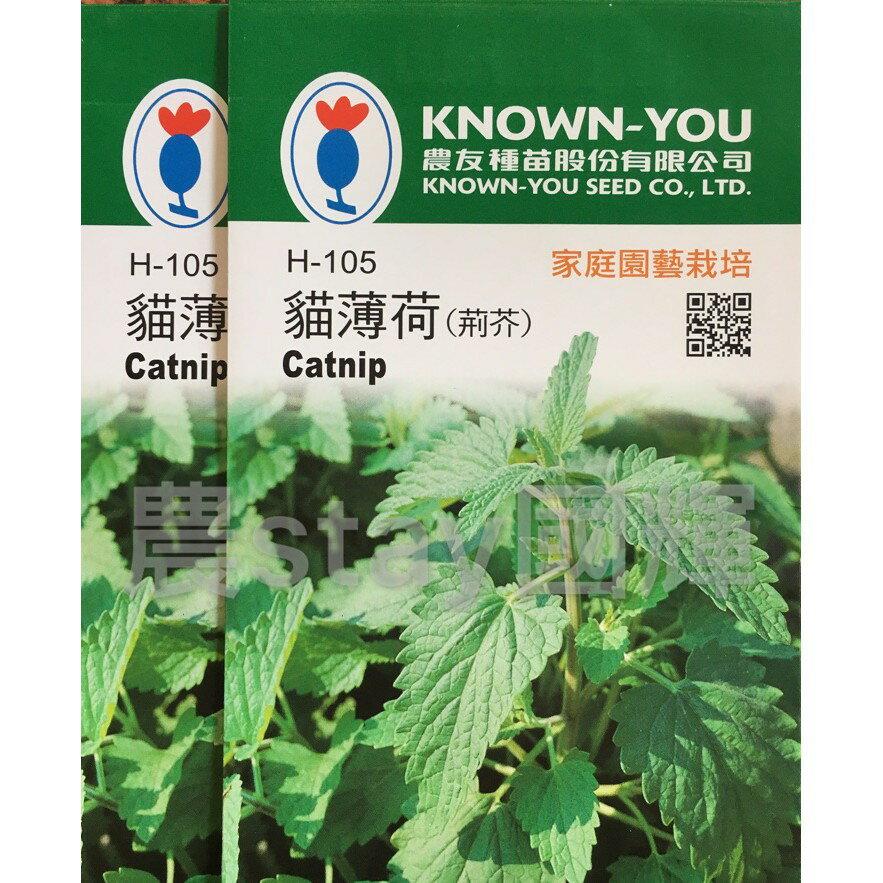 【農stay國輝】貓薄荷種子.荊芥種子《農友品種.小包裝20元/包》