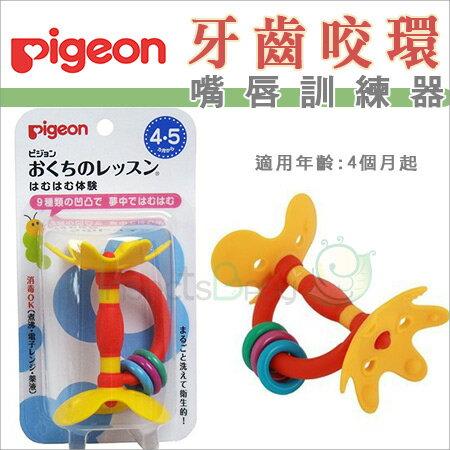 +蟲寶寶+【日本 Pigeon】 貝親 嘴唇訓練器/固齒器 花形固齒器新款 黃色小花