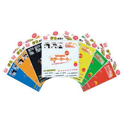 【文具通】SUCCESS 成功 21303 彩色 磁性 膠片 磁片 30x30cm 橘 印方格紙,可裁剪切割圖形文字標誌等,幼兒教育啟智用教材 B4010099