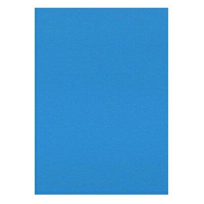 【文具通】淺藍色2x3珍珠板 8# H9010010