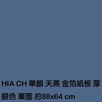 【文具通】厚銀厚紙板 P1230003