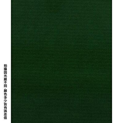 【文具通】四開粉彩紙17 P1330089