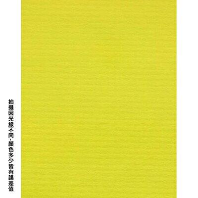【文具通】四開粉彩紙26 P1330098