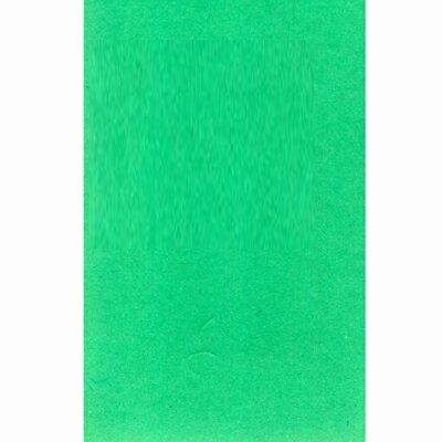 【文具通】對開 對K 書面紙 海報紙 淺綠色 出貨量為5張 購買前請注意,紙製品不接受退換貨! P1400010
