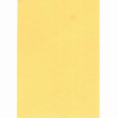 【文具通】對開 對K 書面紙 海報紙 肉色 出貨量為5張 購買前請注意,紙製品不接受退換貨! P1400013
