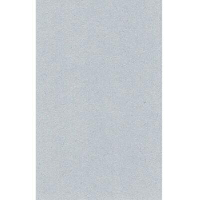 【文具通】對開 對K 書面紙 海報紙 灰色 出貨量為5張 購買前請注意,紙製品不接受退換貨! P1400020