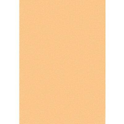 【文具通】對開 對K 書面紙 海報紙 淺柑色 出貨量為5張 購買前請注意,紙製品不接受退換貨! P1400039