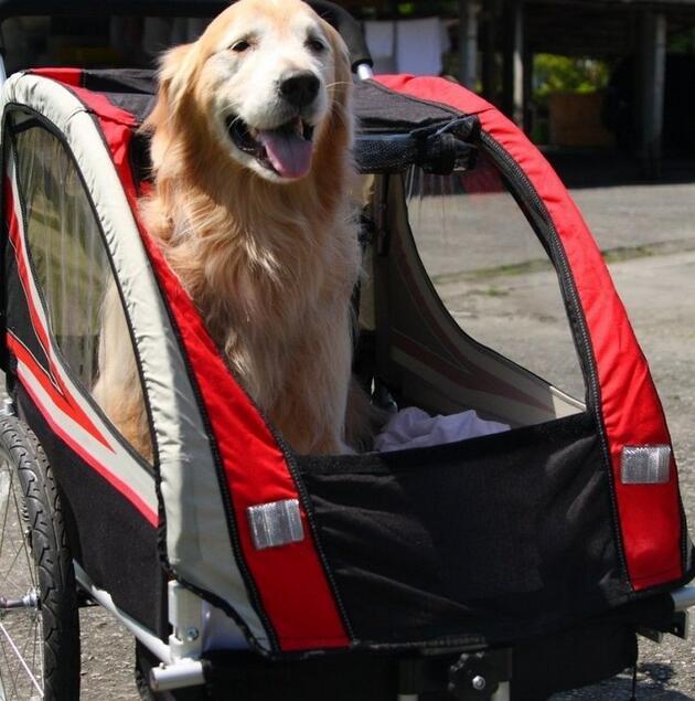 新莊風馳~~AiBIKE 新一代20吋寶貝寵物南瓜車(小摺 小徑 公路車 登山車 用)