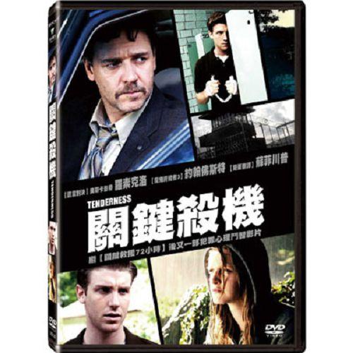 關鍵殺機DVD