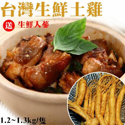 生鮮土雞 全雞去內臟 1.2k~1.3k  隻~送生鮮人蔘~家常料理  燉湯進補  節慶祭