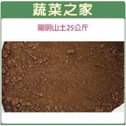陽明山土25公斤