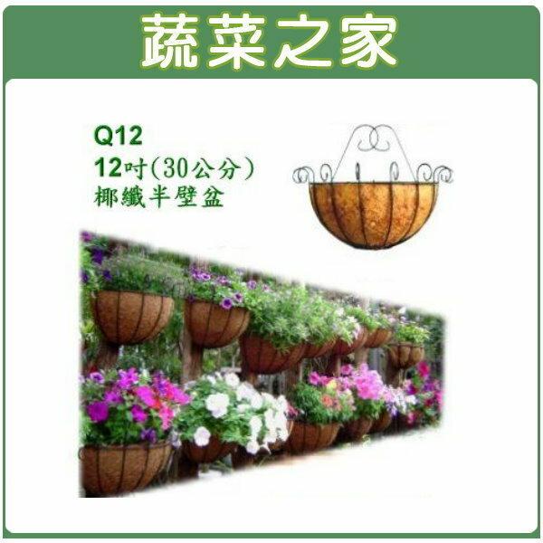 ~蔬菜之家006~A12~12吋 30公分 硬椰纖半壁組Q12