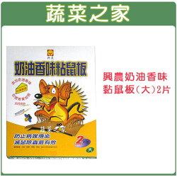 【蔬菜之家】003-A44興農奶油香味黏鼠板(大)2片裝