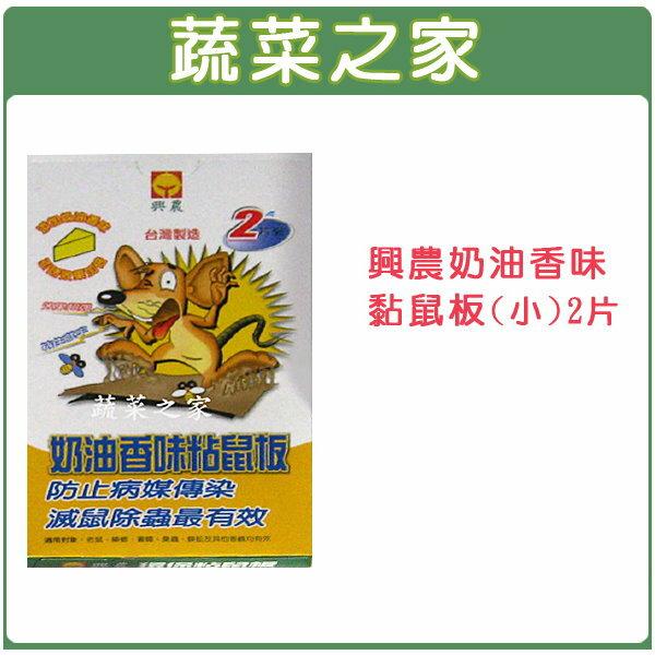 【蔬菜之家】003-A45興農奶油香味黏鼠板(小)2片裝