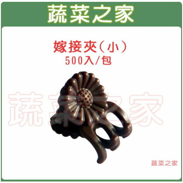 【蔬菜之家009-C56】嫁接夾(固定夾.蘭花夾)-(小)500入/包