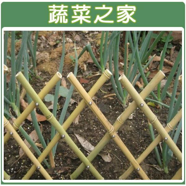 【蔬菜之家011-A14】伸縮竹籬笆(可任意伸長)95公分