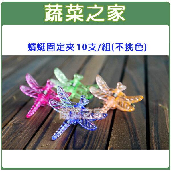 【蔬菜之家011-A33】蜻蜓固定夾10支/組(不挑色)