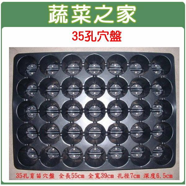 ~蔬菜之家005~C72~35孔穴盤8個 組