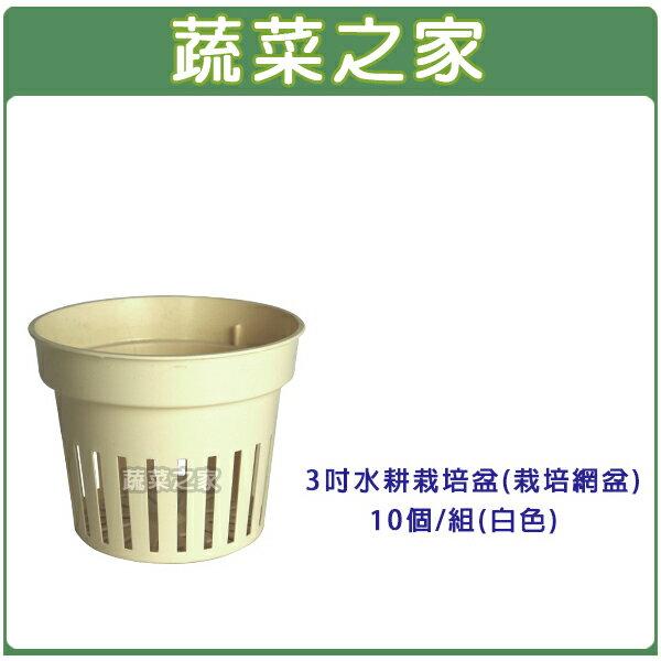 【蔬菜之家005-C79-1】3吋水耕栽培盆(水草栽培網盆)10個/組(白色)