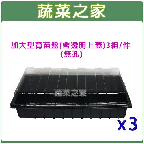 蔬菜之家:【蔬菜之家005-C84】加大型育苗盤(無孔)含透明上蓋3組件(育苗箱)