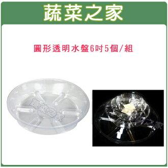 【蔬菜之家015-F98-6】圓形透明水盤6吋5個/組