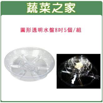 【蔬菜之家015-F98-8】圓形透明水盤8吋5個/組