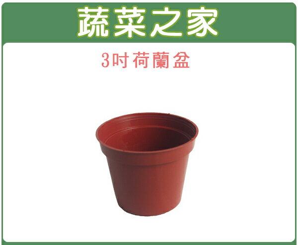 【蔬菜之家005-C38】3吋荷蘭盆、栽培盆10個/組