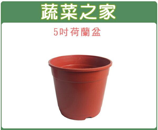 【蔬菜之家005-C60】5吋荷蘭盆、栽培盆10個/組
