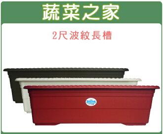 【蔬菜之家005-D55】2尺波紋長槽磚紅色、棕色、白色