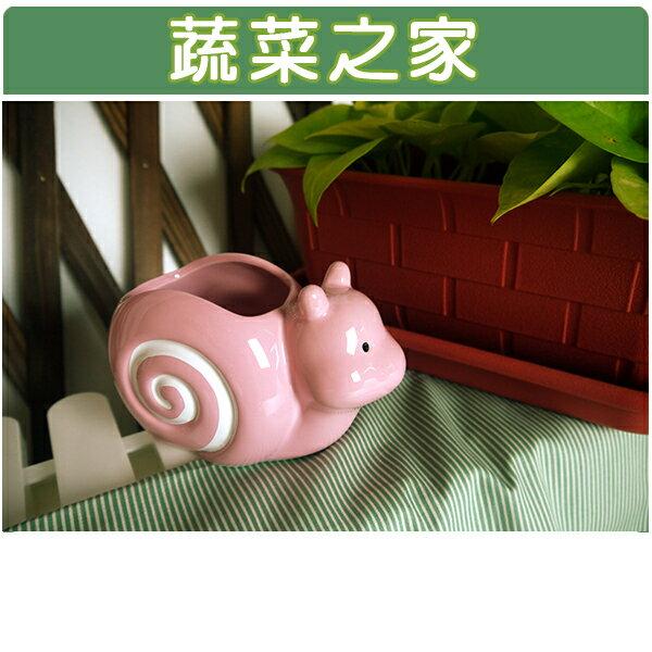 ~蔬菜之家004~G03PI~陶瓷蝸牛瑞士捲~粉紅色
