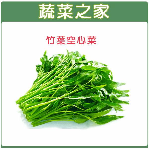 【蔬菜之家】A23.竹葉空心菜種子 (竹葉種蕹菜)500顆
