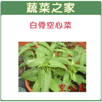 【蔬菜之家】A24.空心菜種子 (白骨種蕹菜)300顆