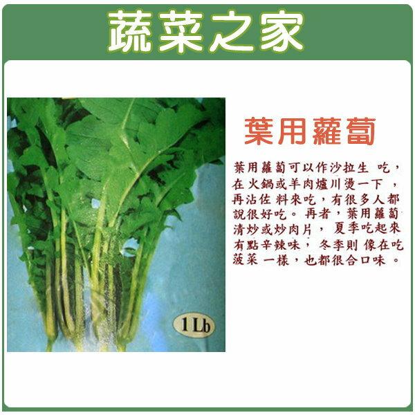 【蔬菜之家】A28.葉用蘿蔔種子(日本時田種苗公司進口)100顆