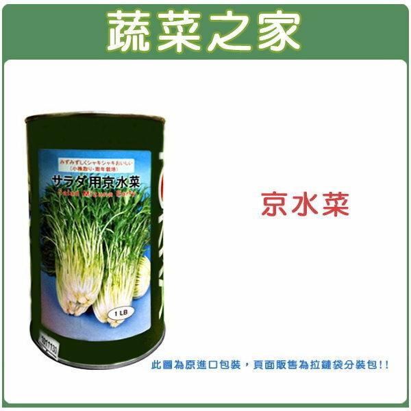 【蔬菜之家】A37.京水菜種子1000顆
