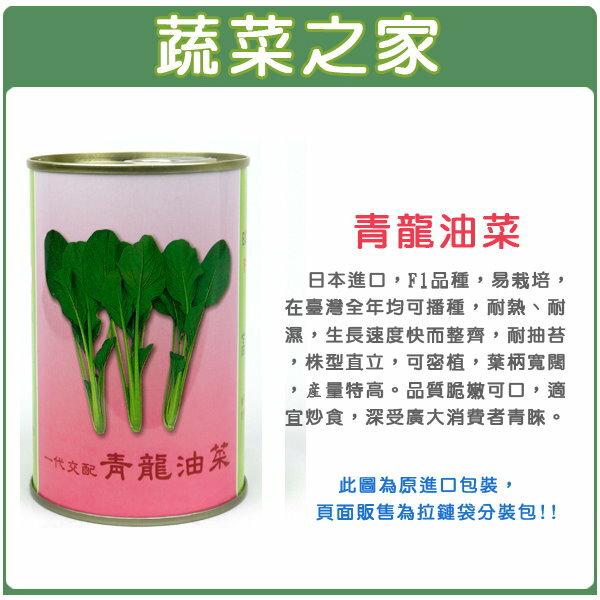【蔬菜之家】大包裝A65.青龍油菜種子30克(日本進口)