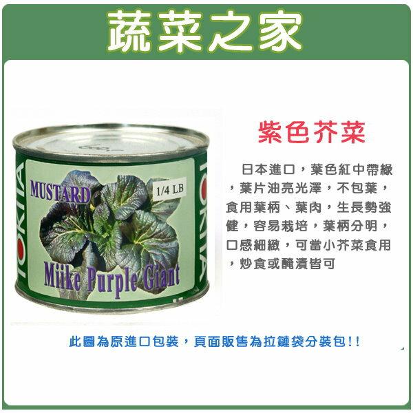 【蔬菜之家】A67.紫色芥菜種子