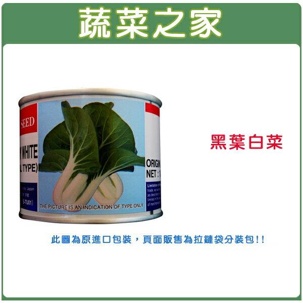 【蔬菜之家】A70.黑葉白菜種子(共有2種包裝可選)