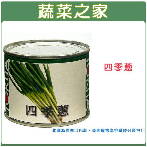 【蔬菜之家】D02.四季蔥種子300顆