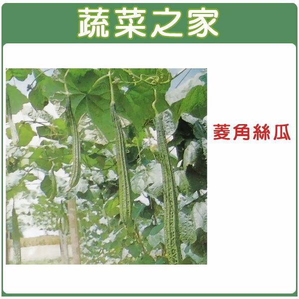 【蔬菜之家】G28.菱角絲瓜種子5顆(綠菱,澎湖絲瓜)