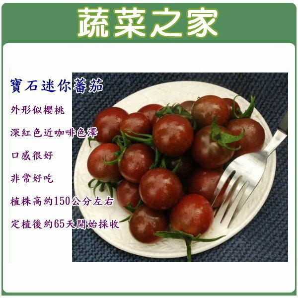 【蔬菜之家】G51.寶石迷你蕃茄種子5顆(黑櫻桃蕃茄)