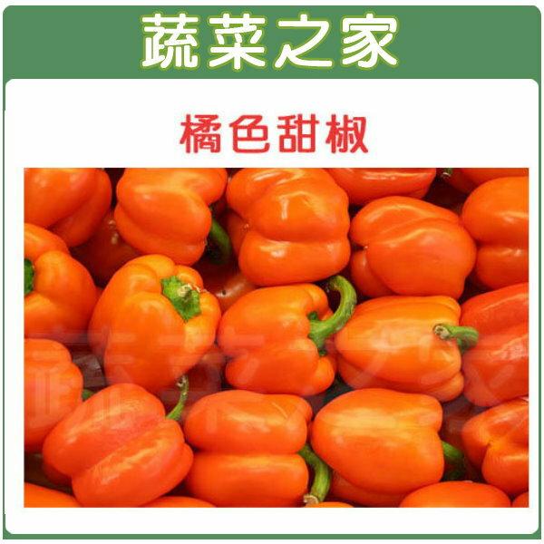 【蔬菜之家】G76橘色甜椒3顆