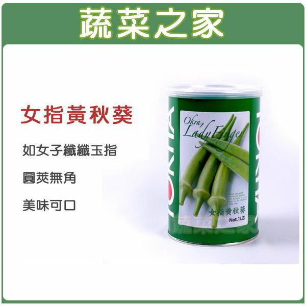【蔬菜之家】G79.女指黃秋葵種子30顆