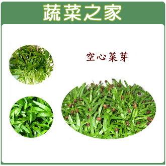【蔬菜之家】J09.空心菜(芽菜種子)25克