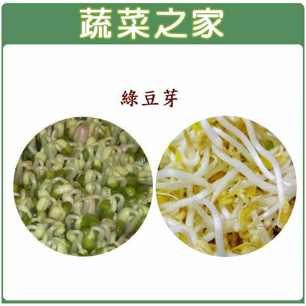 【蔬菜之家】J10.綠豆(芽菜種子)30克