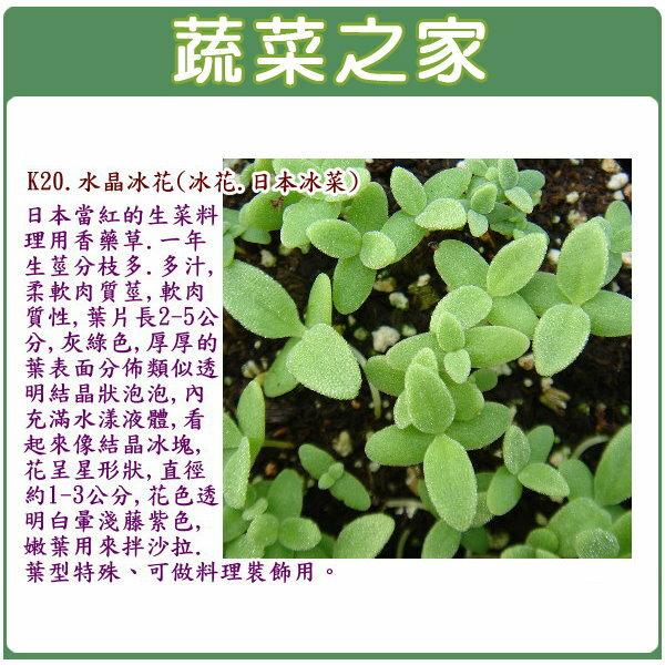 【蔬菜之家】K20.水晶冰花種子100顆(冰花.日本冰菜)