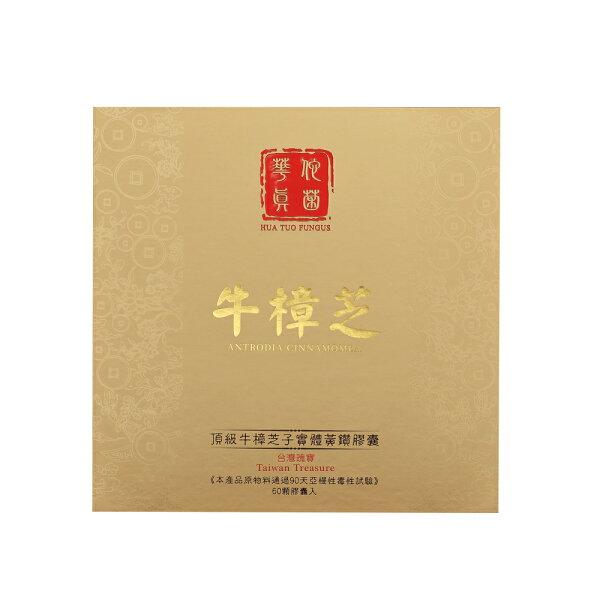 【華佗真菌】頂級牛樟芝子實體黃鑽膠囊60顆