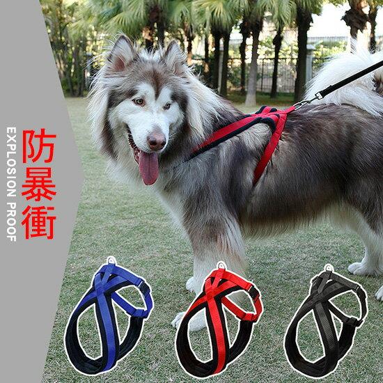 ++中大型犬防暴衝專用++X型加厚防護型胸背-小樂寵